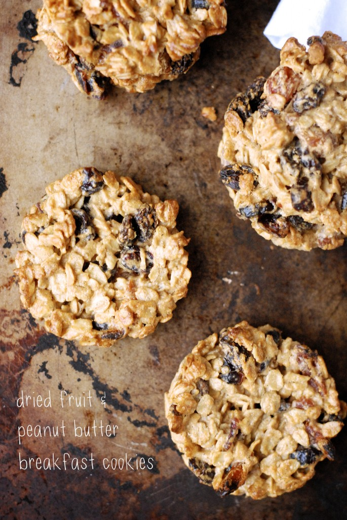 dried fruit pb bfast cookies 1