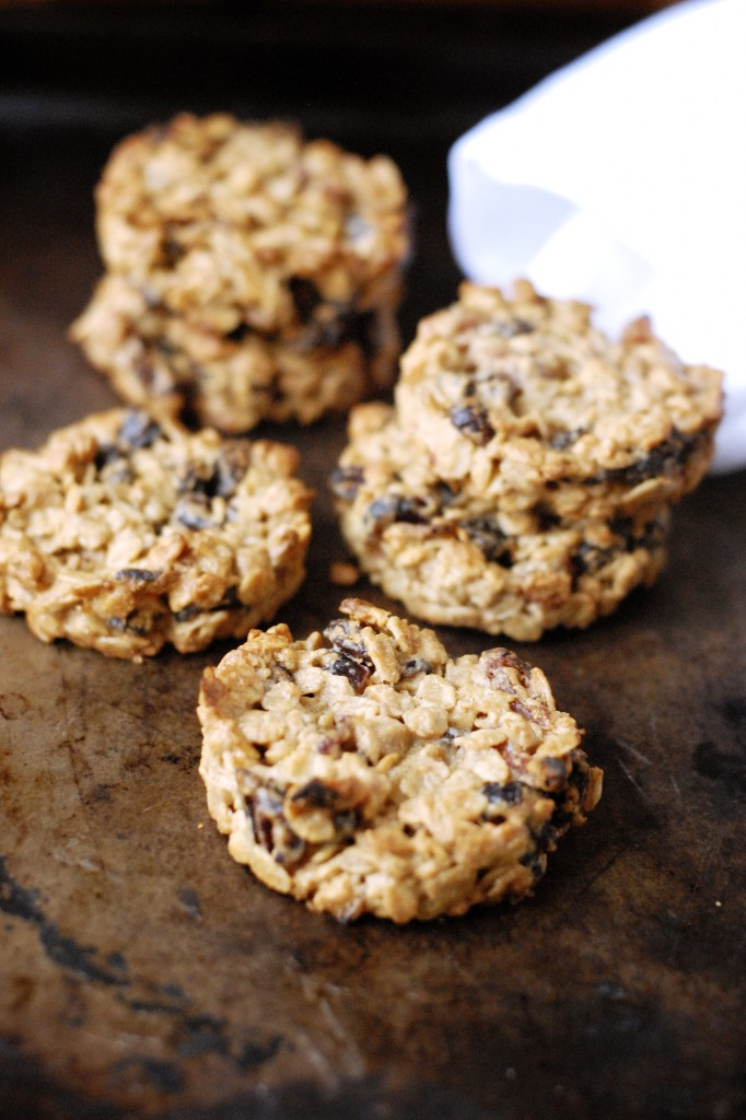 dried fruit pb bfast cookies 2