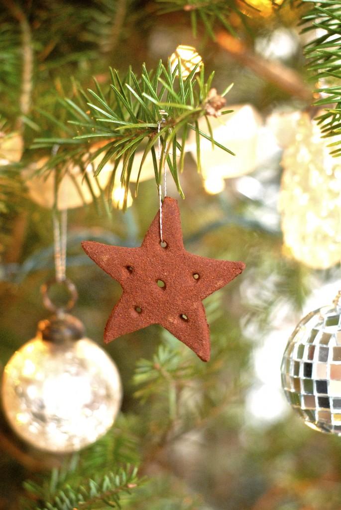 cinnamon ornaments | kumquat