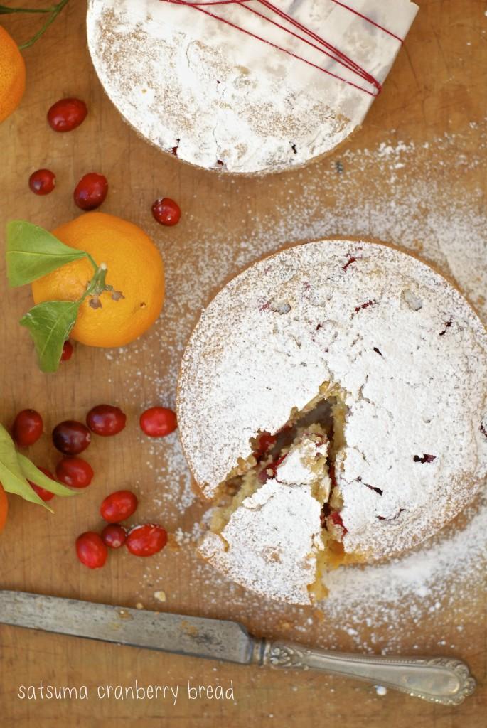 gluten-free satsuma cranberry loaf | kumquat