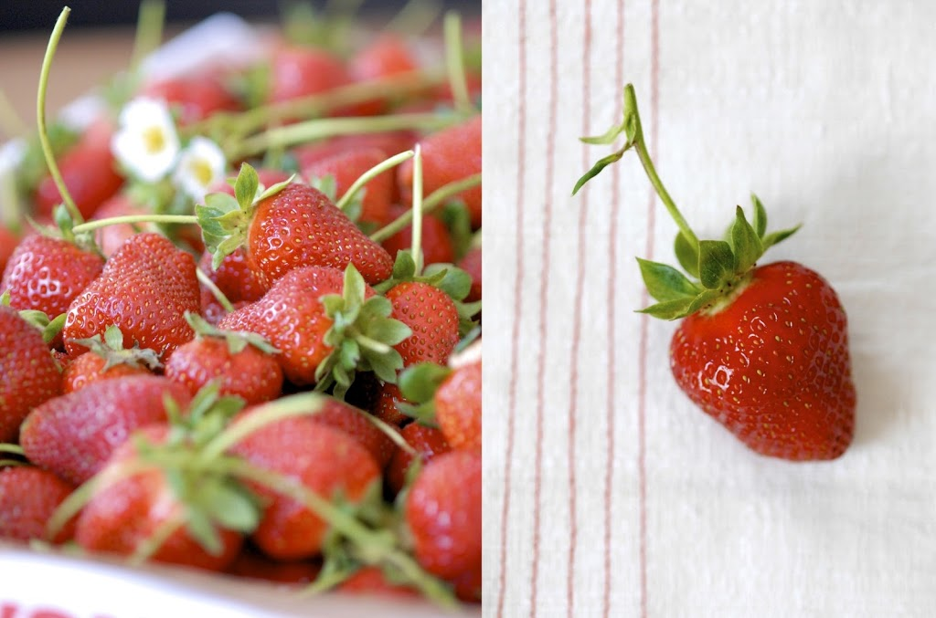 strawberry-coconut-ice-cream-4
