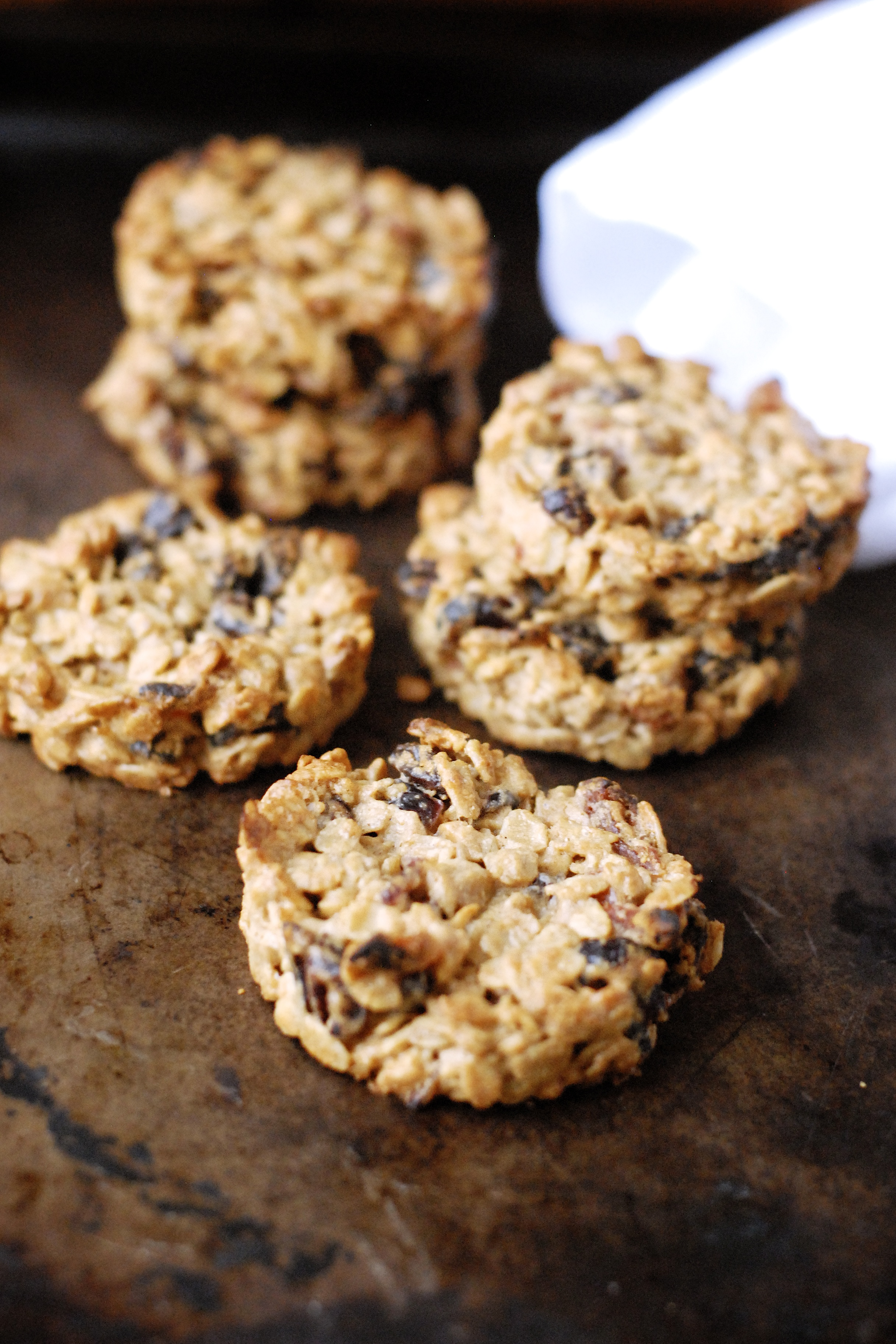 Dried Fruit Amp Peanut Butter Breakfast Cookie Kumquat